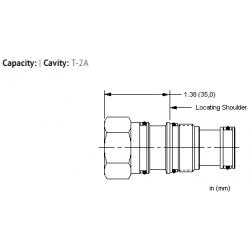 XBCAXXN All ports blocked cavity plug