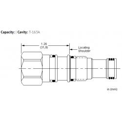 XZCBXXN All ports blocked cavity plug