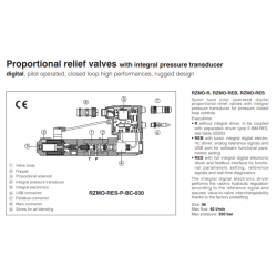 Proportional relief valves with integral pressure transducer RZMO-R-030