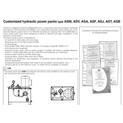 Customized hydraulic power packs type ASM,ASV,ASA,ASF,ASJ,AST,ASB