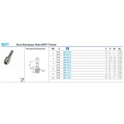 3621 Stud Standpipe, Male BSPT Thread