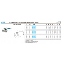 4902 2/2 Standard In-Line Ball Valve, Female BSPP Thread