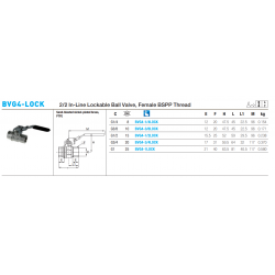 BVG4-LOCK 2/2 In-Line Lockable Ball Valve, Female BSPP Thread