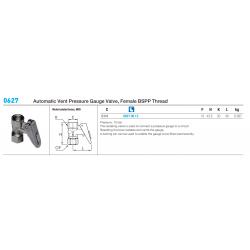 0627 Automatic Vent Pressure Gauge Valve, Female BSPP Thread
