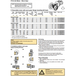 P1V-A Air Motor - Worm Gear