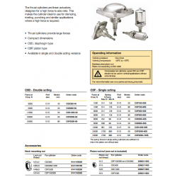 Thrust Cylinders - C0D/C0P