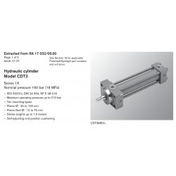 Hydraulic cylinder Model CDT3 Series 1X