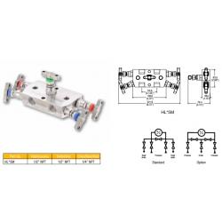 5 Valve remote manifold high pressure style