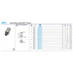 3675 Stud Fitting, Male BSPT Thread