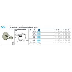3618 Single Banjo, Male BSPP and Metric Thread