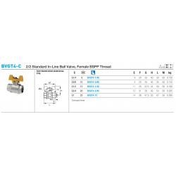 BVGT4-C 2/2 Standard In-Line Ball Valve, Female BSPP Thread