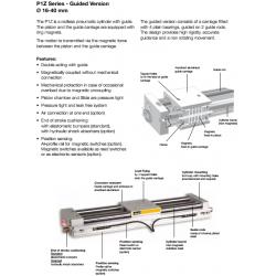 P1Z Series - Guided Version Ø 16-40 mm