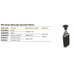 B43 Series Manually Operated Valves