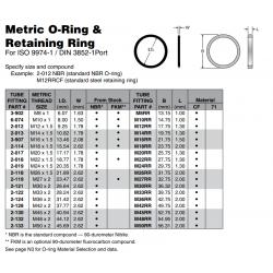 Metric O-Ring & Retaining Ring For ISO 9974-1 / DIN 3852-1Port