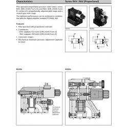 Series R4V / R6V (Proportional)