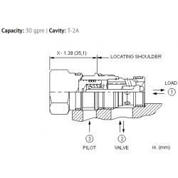 CNEEXCN Pilot-to-open check valve with bypass orifice
